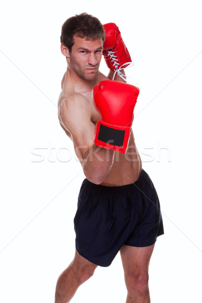 Stock photo: Male boxer isolated