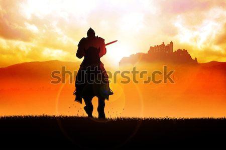 Knight силуэта иллюстрация закат лошади скорости Сток-фото © rudall30