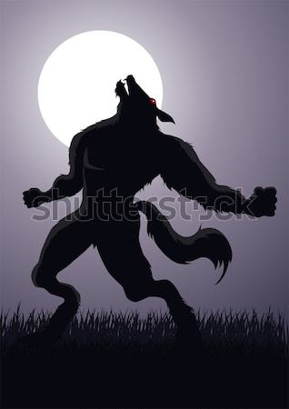 Werewolf Stock photo © rudall30