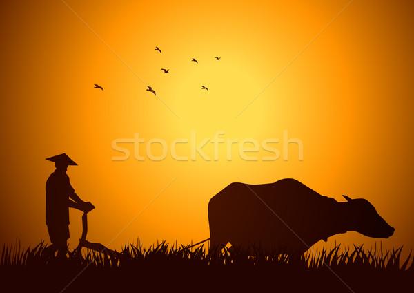 Tradycyjny dziedzinie czas ilustracja rolnik pracy Zdjęcia stock © rudall30