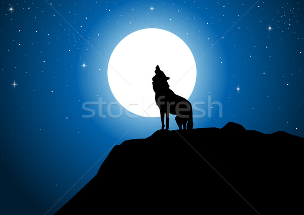 Full Moon Stock photo © rudall30