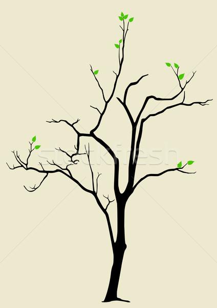 Esperança estoque vetor árvore casal folhas Foto stock © rudall30