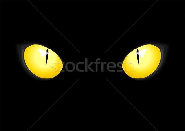 Gato ojos stock vector arte noche Foto stock © rudall30