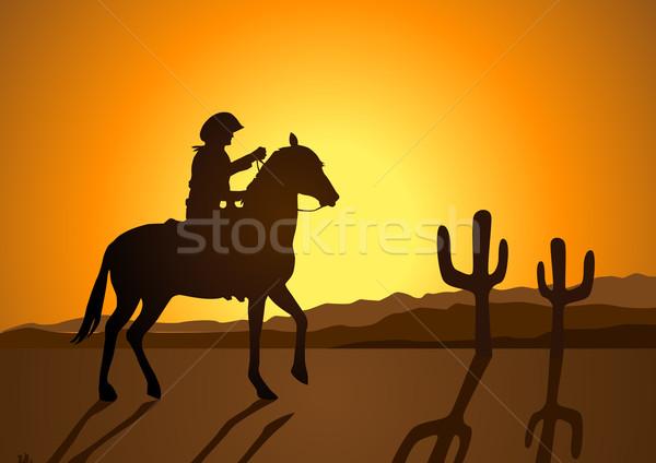 Wild Wild West Stock photo © rudall30