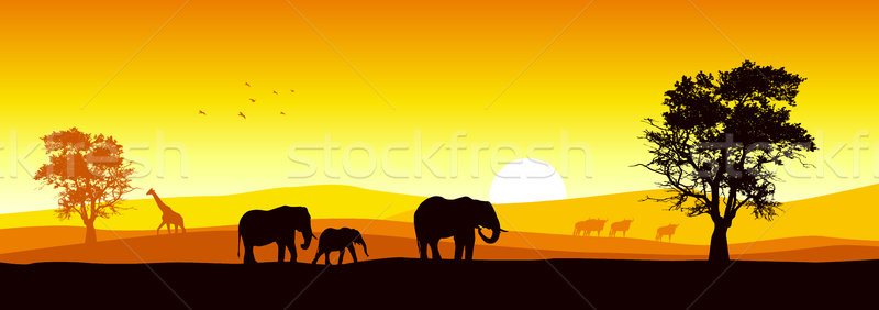 Foto stock: Safari · stock · vector · África · fauna · árbol