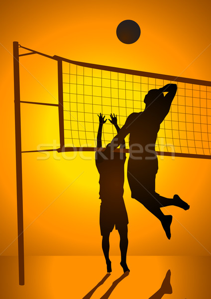 Volley Ball Stock photo © rudall30