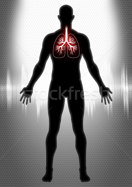Pulmonary Stock photo © rudall30