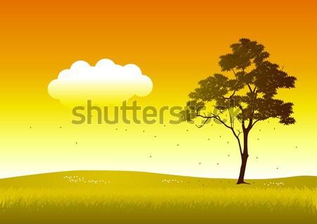 árvore silhueta ilustração céu montanha Foto stock © rudall30