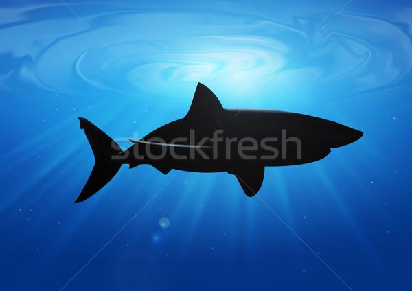 Köpekbalığı stok örnek derin mavi deniz Stok fotoğraf © rudall30