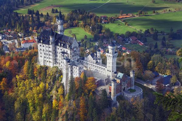 Castello di Neuschwanstein Germania view autunno giorno Foto d'archivio © rudi1976