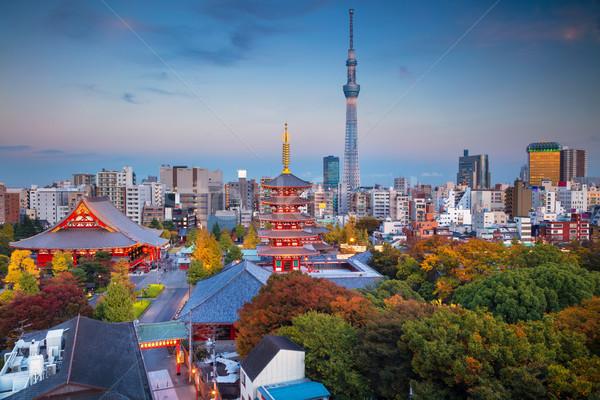 Tokió városkép kép sziluett templom szürkület Stock fotó © rudi1976