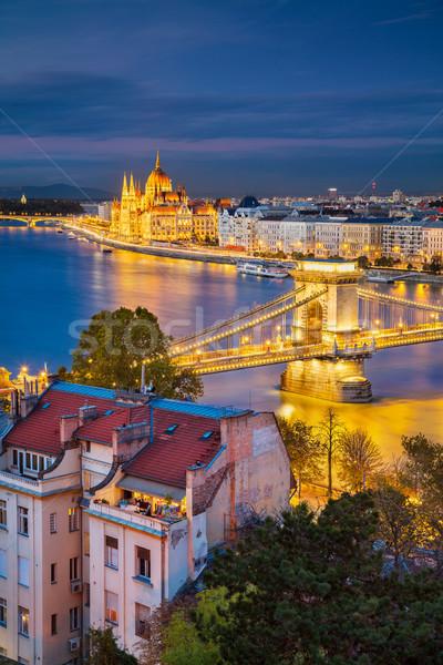 Budapeste cityscape imagem cidade Hungria crepúsculo Foto stock © rudi1976