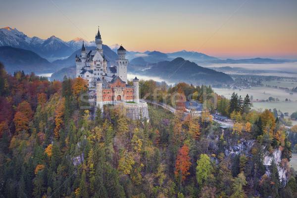 Neuschwanstein kastély Németország kilátás ködös ősz szürkület Stock fotó © rudi1976