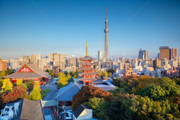Tokio paisaje urbano imagen horizonte otono puesta de sol Foto stock © rudi1976