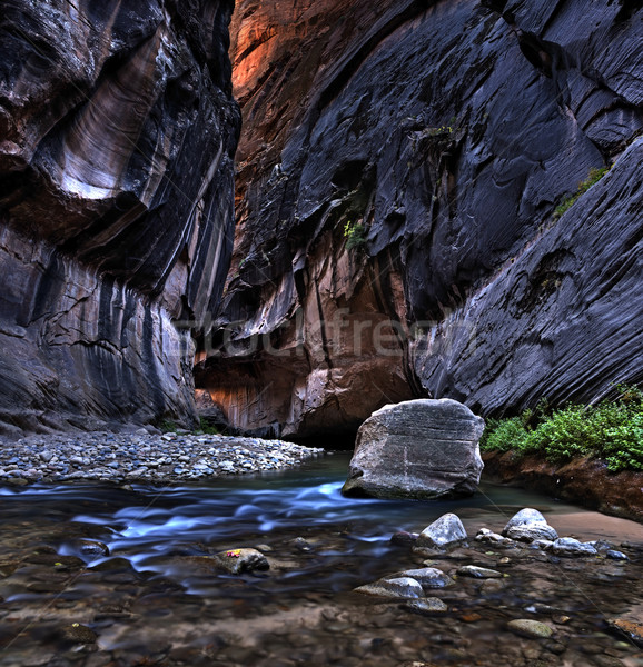 Zion National Park. Stock photo © rudi1976