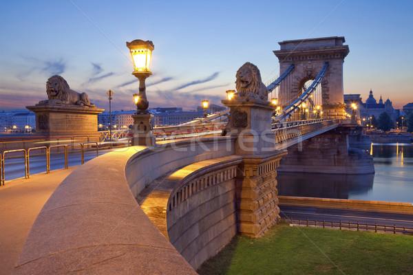 Chain Bridge, Budapest. Stock photo © rudi1976