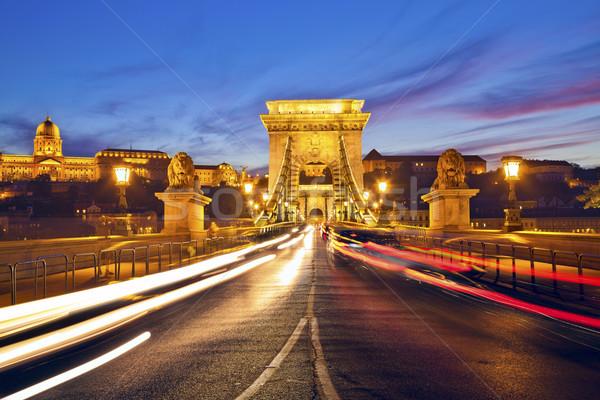 Szechenyi Chain Bridge, Budapest. Stock photo © rudi1976