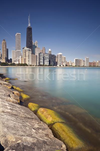 Chicago skyline Stock photo © rudi1976