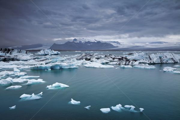Floating icebergs. Stock photo © rudi1976