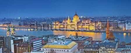 Budapest panorámakép kép város Magyarország szürkület Stock fotó © rudi1976