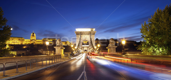 Szechenyi Chain Bridge, Budapest. Stock photo © rudi1976
