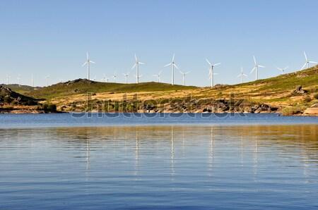 Wind Turbines Stock photo © ruigsantos