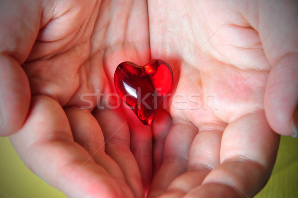 Cuore mani rosso tenere Palm Foto d'archivio © ruigsantos