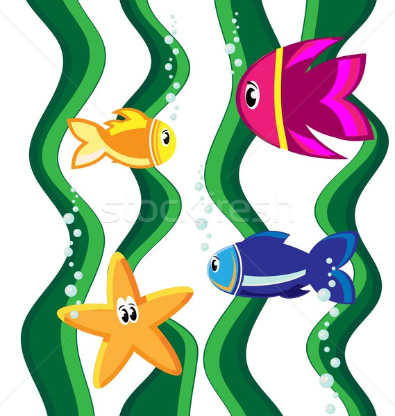 Balık renk görmek star su aile Stok fotoğraf © rumko