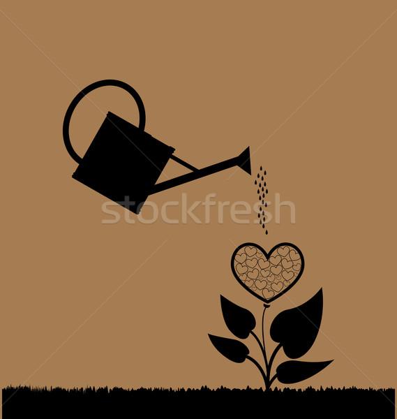 Wody puszka roślin serca drzewo Zdjęcia stock © rumko