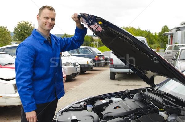車両 笑みを浮かべて エンジン コンパートメント 車 ストックフォト © runzelkorn