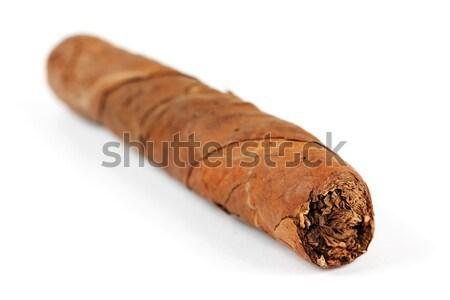 Cigarros La Habana mano aislado blanco humo Foto stock © RuslanOmega