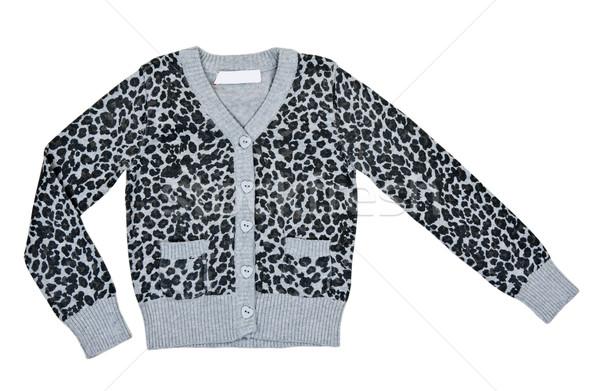 gray mottled sweater Stock photo © RuslanOmega