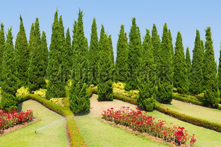 Stock photo: Landscaped garden Royal Flora Ratchaphruek