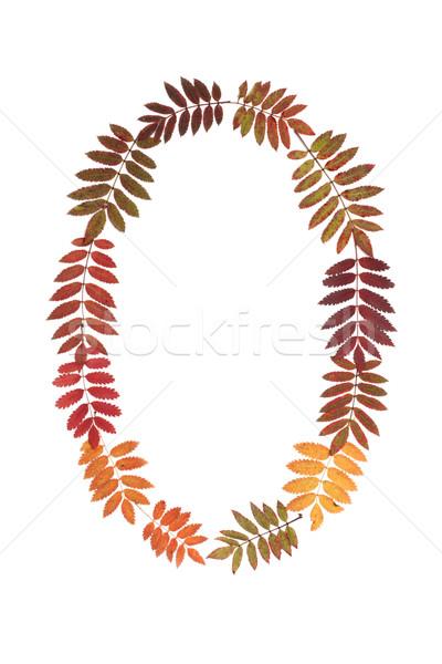 Numerale pari a zero autunno foglio bianco sfondo Foto d'archivio © RuslanOmega