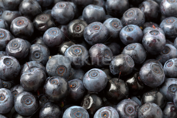 background blueberries Stock photo © RuslanOmega