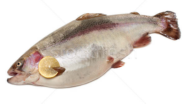 Damp trout put of the lemon Stock photo © RuslanOmega