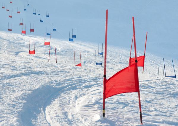Ski parallèle pavillon rouge bleu sport Photo stock © RuslanOmega