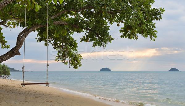 веревку Swing дерево пляж закат небе Сток-фото © RuslanOmega