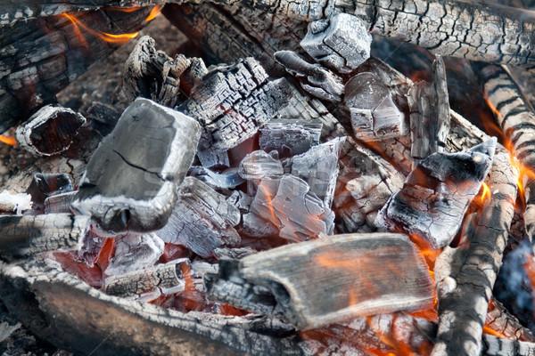 Campfire burning coal Stock photo © RuslanOmega