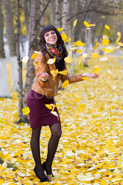 Autumn Leaves - Stock Image Stock photo © RuslanOmega