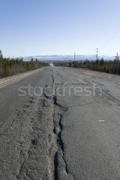 Splitting road Stock photo © RuslanOmega