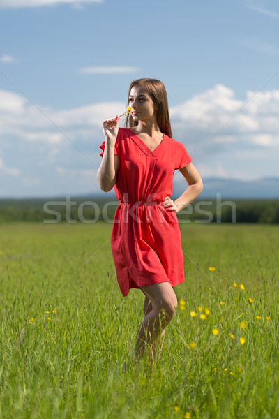 20 year-old girl in red dress sniffing a yellow flower Stock photo © RuslanOmega