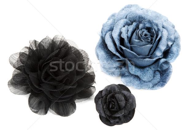 два черный один синий цветок закрывается кружево Сток-фото © RuslanOmega