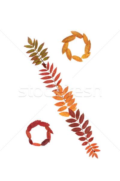 Foto stock: Assinar · por · cento · outono · folha · branco · negócio
