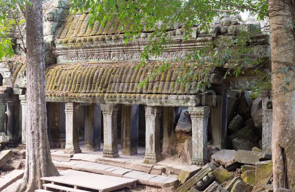 Angkor Wat temple complexe arbres ruines Cambodge Photo stock © RuslanOmega