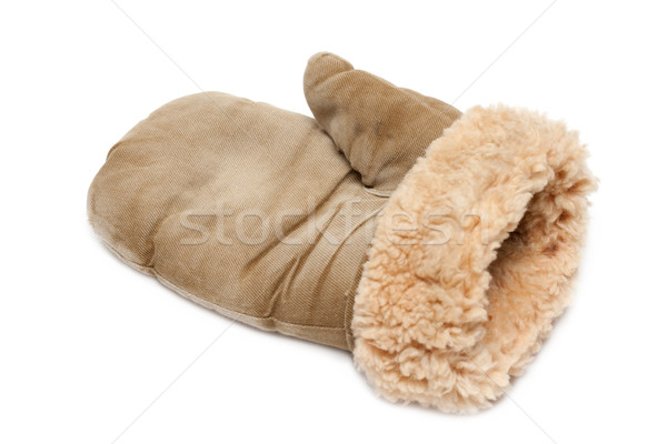 Winter mitten Stock photo © RuslanOmega