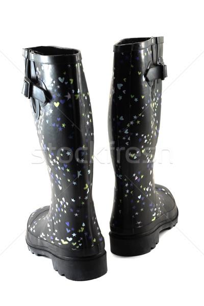 Rubber boots 5 Stock photo © RuslanOmega