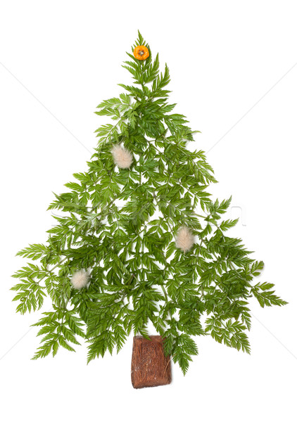 Decorative cristmas spruce Stock photo © RuslanOmega