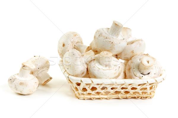 Cogumelos cogumelo cesta branco comida Foto stock © RuslanOmega