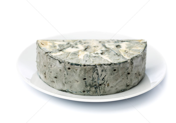 Cheese with black mold on the plate. Stock photo © RuslanOmega